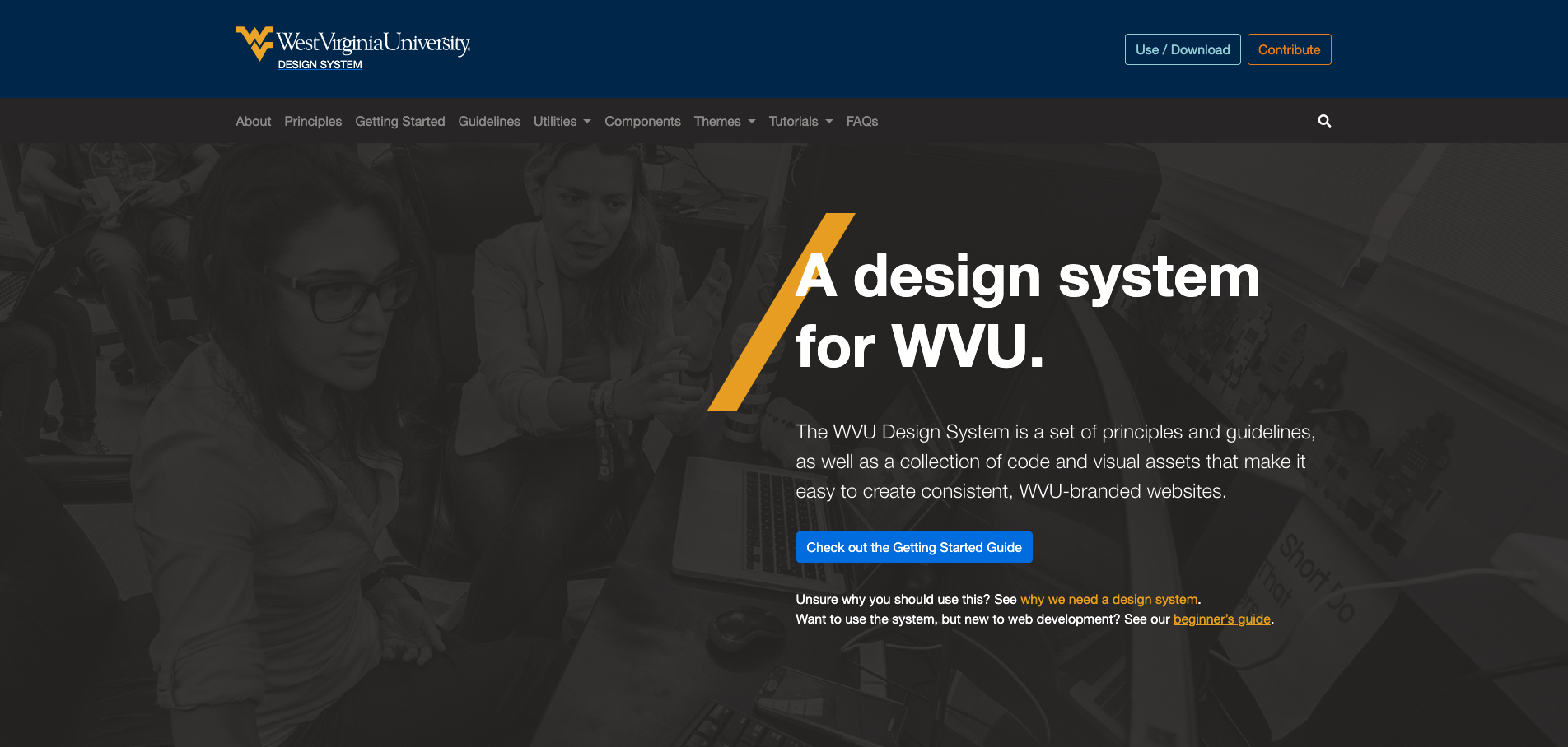 Screenshot of West Virginia University's design system